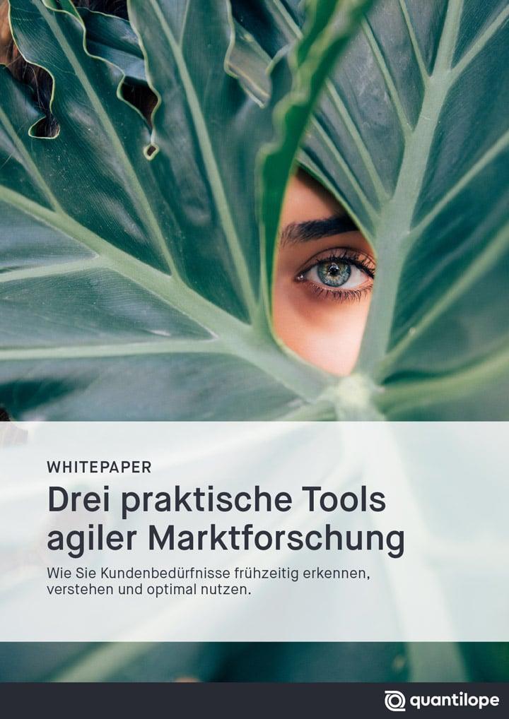 Whitepaper-03-Drei-praktische-Tools-agiler-Marktforschung