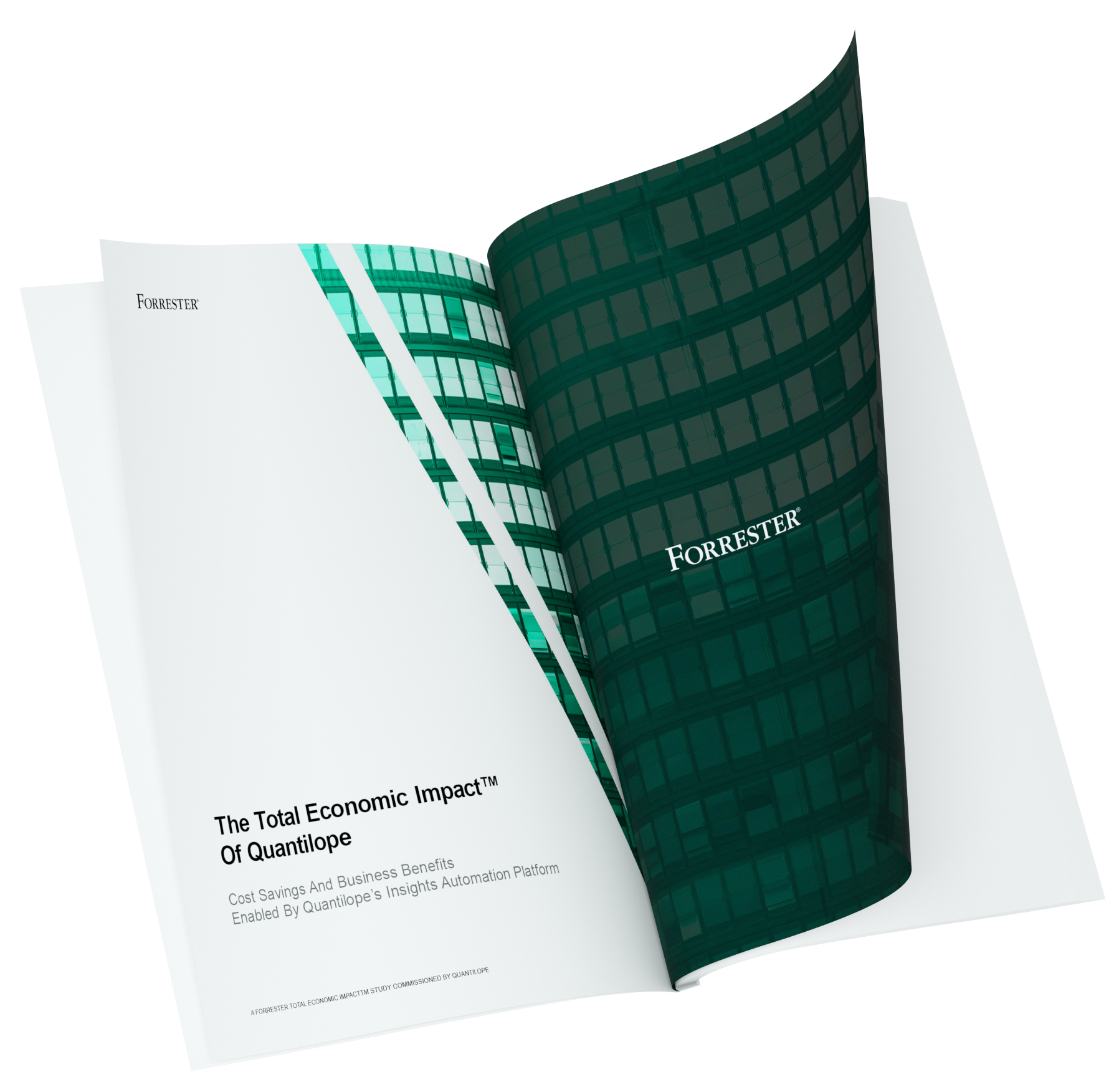 2021-TEI-Report-trnasparent background-1